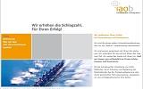 Webprojekt IAOB AG
